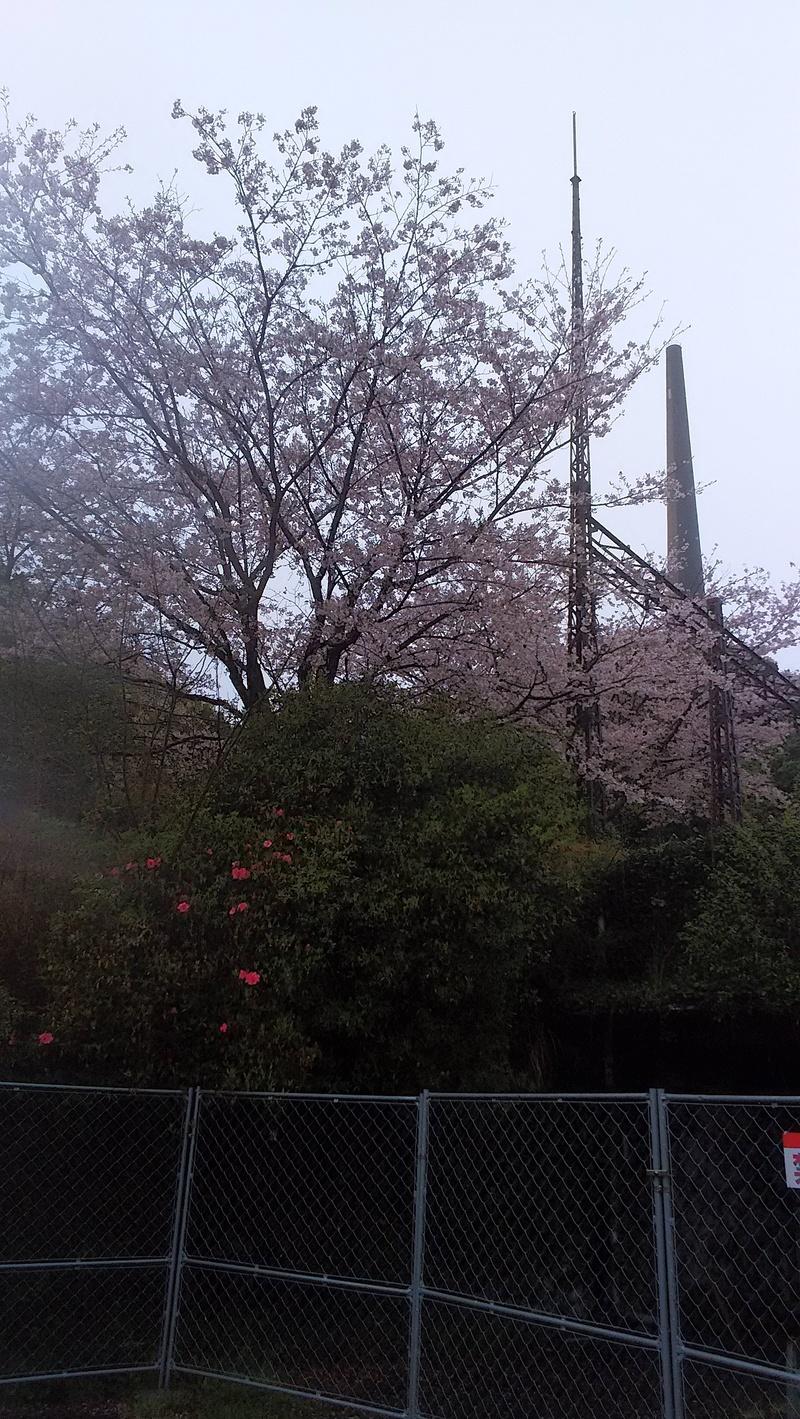 針尾の無線塔に行ってきました