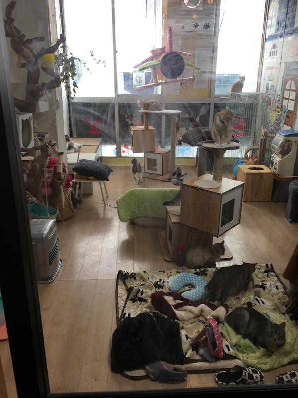 一宮市本町商店街の新しい穴場スポット画像